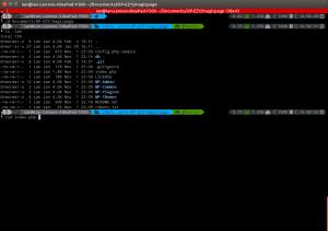 My current terminal setup featuring zsh.